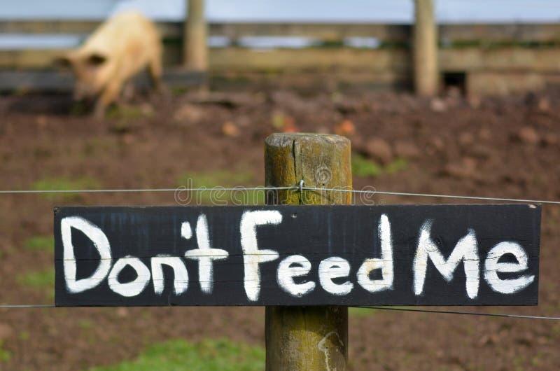 Não me alimente o sinal na pena de porco imagens de stock