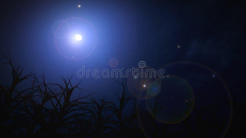 Nächtlicher Himmel auf Halloween. lizenzfreie abbildung