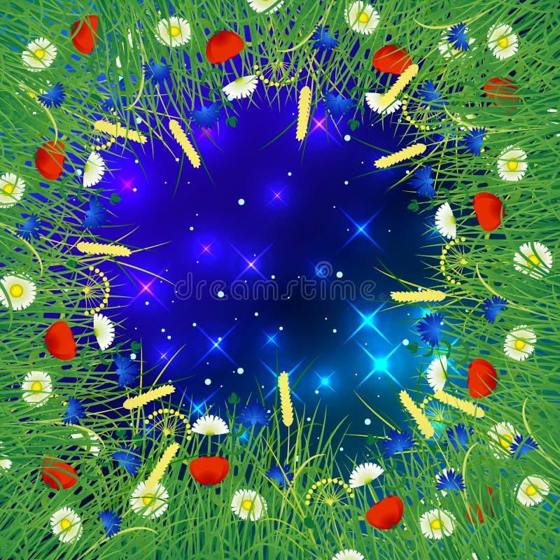Nächtlicher Himmel mit funkelnden Sternen Um den Rahmen von wilden Kräutern und von Blumen stock abbildung