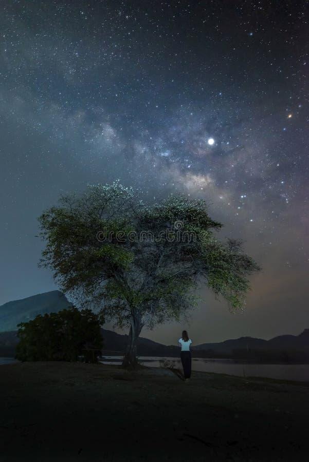 Nächtlicher Himmel mit Sternen und Frauenstellung unter dem Baum und dort ist die Milchstraße auf die Oberseite lizenzfreie stockfotos