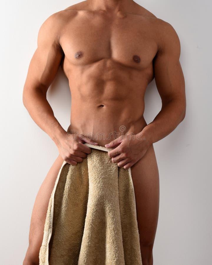 Näck manlig torso royaltyfri foto