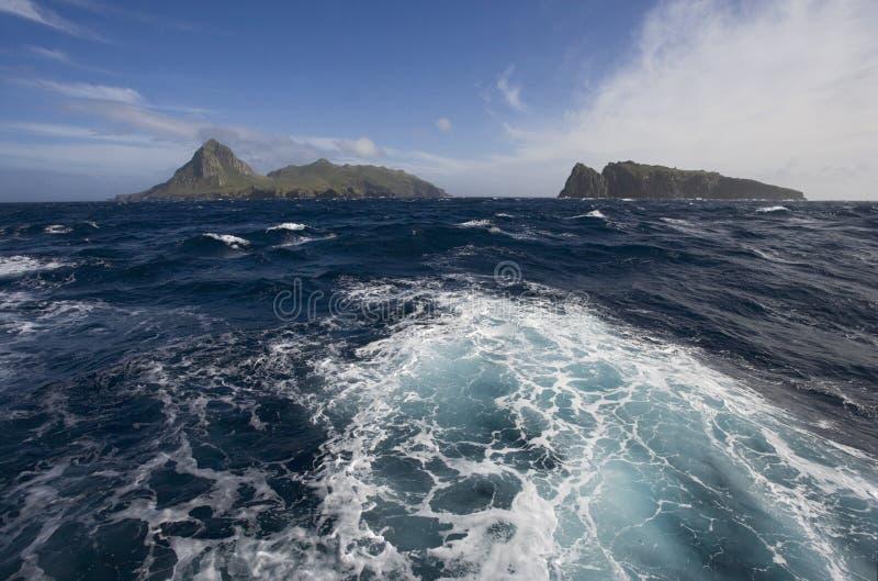 Näktergalö Tristan da Cunha arkivbilder