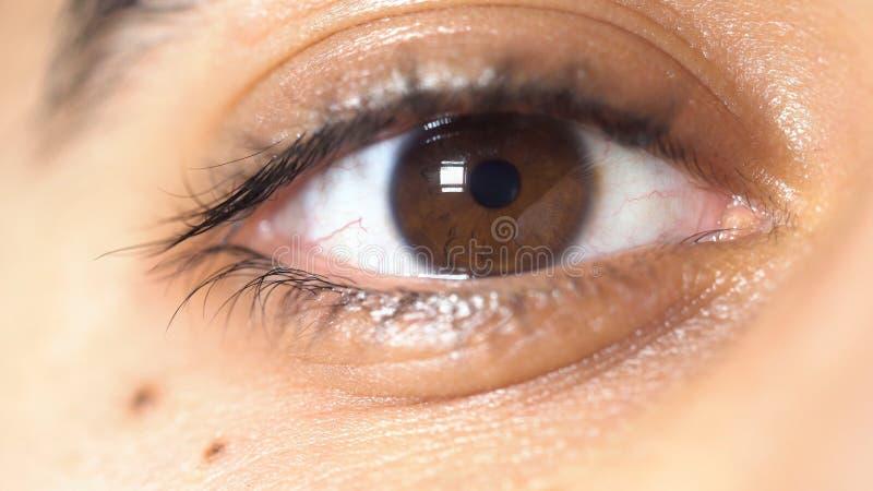 Nära övre bild av det härliga bruna ögat av en ung man, framsidadetaljbegrepp medel Eleven av manligt ögontrångt pass och royaltyfri fotografi