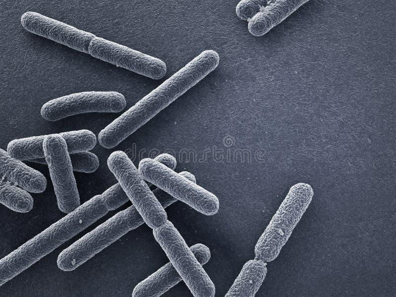 Nära övre för bakterier stock illustrationer