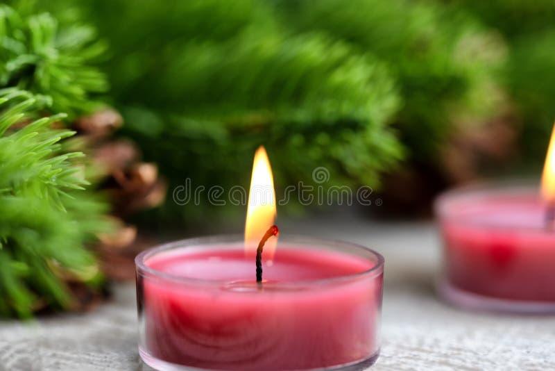 Nära övre sikt av en enkel traditionell brinnande julferiestearinljus med vintergröna filialer i bakgrund royaltyfria bilder