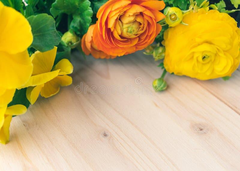 Nära övre sikt av färgrika gula och orange blommande vårblommor på träbakgrund arkivfoton