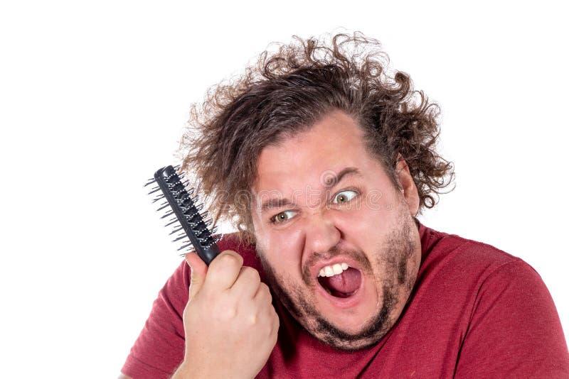 Nära övre stående av feta manförsök att kamma hans tilltrasslade och stygga hår med en liten svart hårkam som isoleras på vit bak arkivbilder