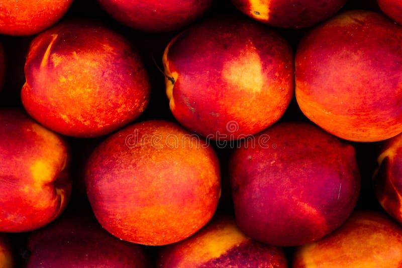 Nära sikt av flera mogna persikor av vibrerande färger Symmetrisk modell som bildas av tropiska frukter arkivbild