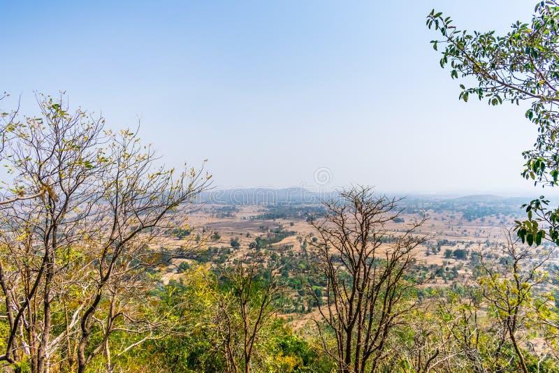 Nära sikt av träd med landskapsikt av det indiska fältet uppifrån av ett stenigt berg arkivbild