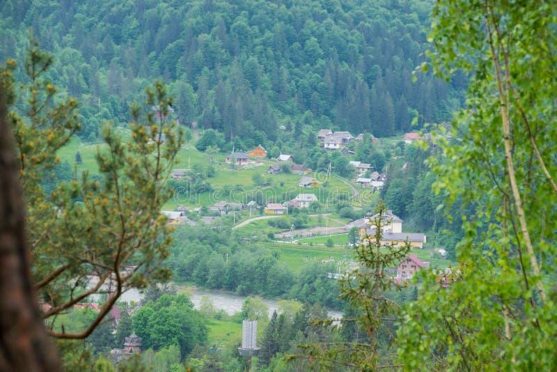 By nära skog- och bergfloden royaltyfri foto