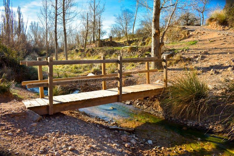 nära upp av en träbro på ett flodöverflöd av örter och arbetskopia i det soliga ljuset av soluppgången Bron har ett trä royaltyfria foton