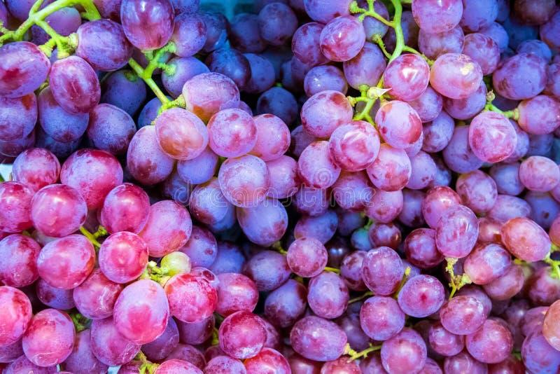 Nära upp röd druva på hyllan i ny marknad sunda frukter för anti-oxidant royaltyfri fotografi