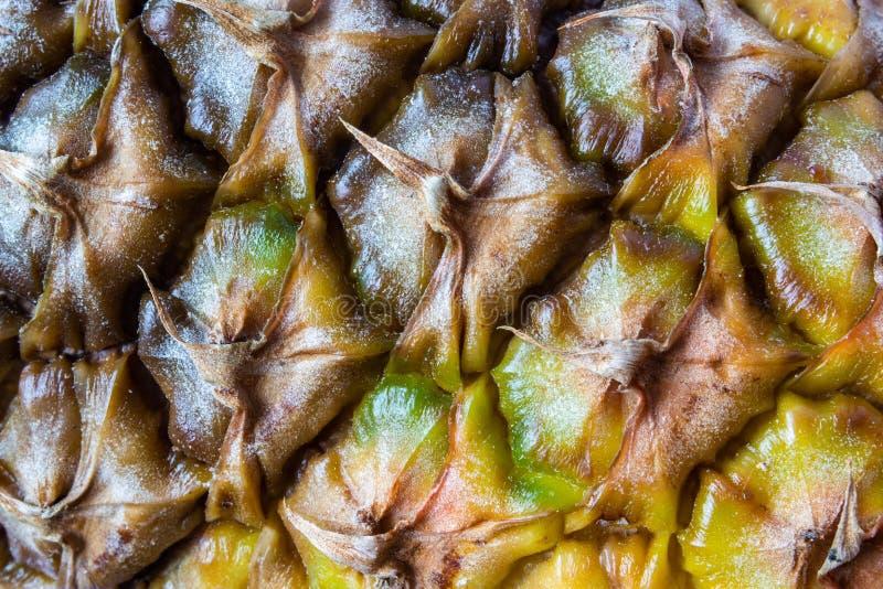 Närbild av ananashudtextur 1 arkivfoton