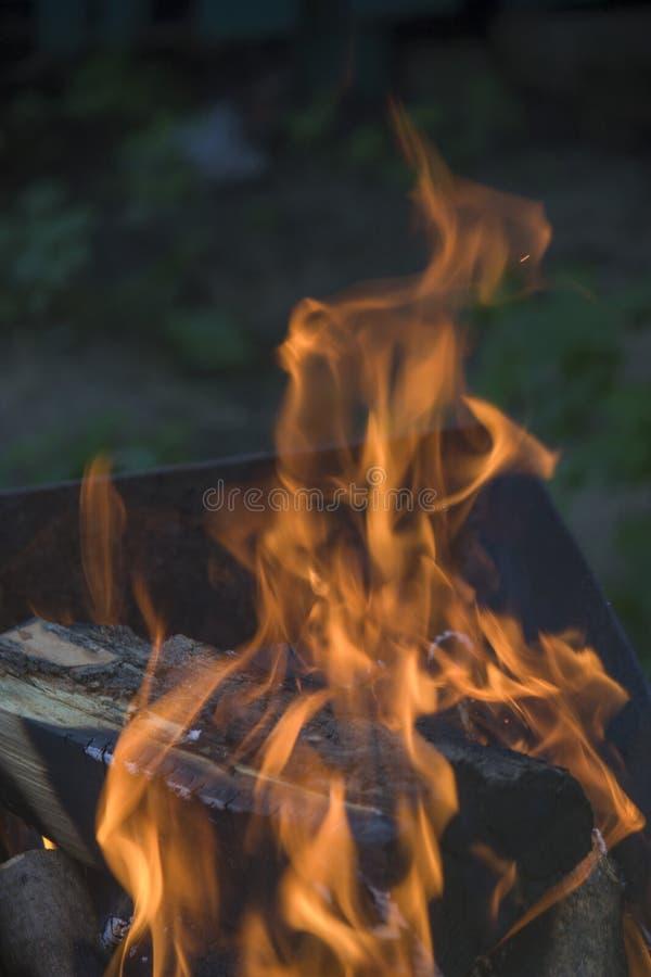 Närbild av brand och flammor på en suddig naturlig bakgrund arkivfoton