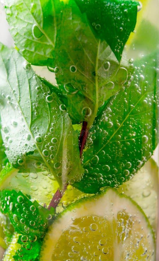 Närbild av coctailen med mintkaramellsidor och limefrukt arkivbild