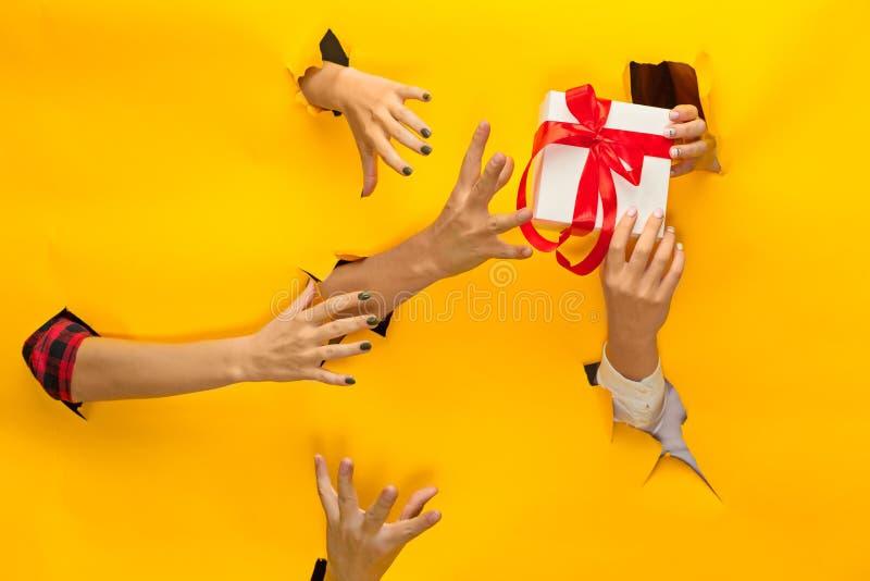Närbild av den kvinnliga handen som rymmer en gåva till och med ett sönderrivet papper som isoleras fotografering för bildbyråer