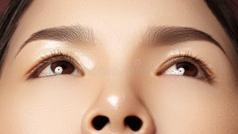 Närbild av det härliga asiatiska kvinnliga ögat med perfekta Shape ögonbryn Ren hud, modenaturelsmink Bra vision fotografering för bildbyråer