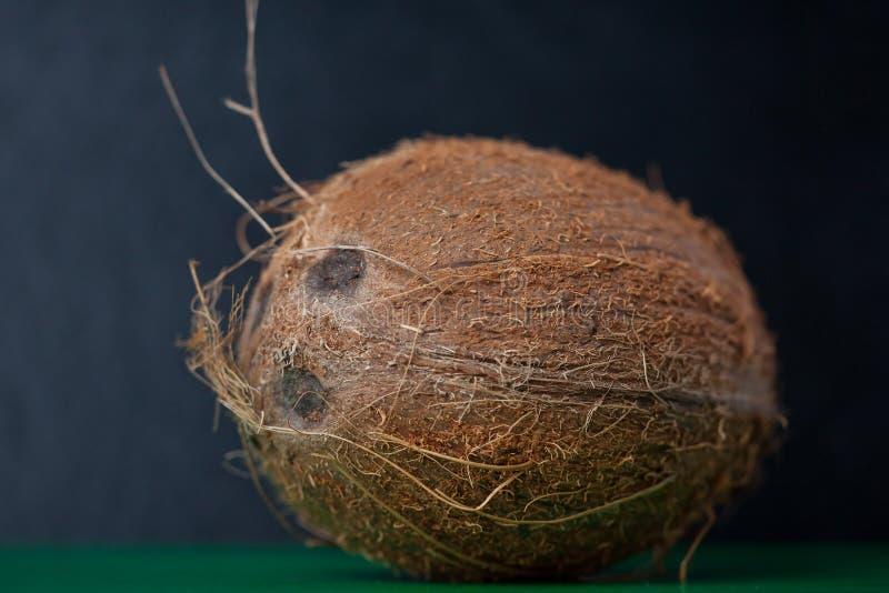 Närbild av en exotisk och ny kokosnöt på en svart bakgrund arkivbilder