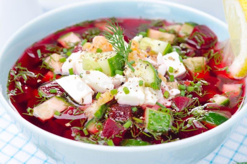 Närbild av en kall rödbetasoppa med gurkor, ägg och örter royaltyfria bilder