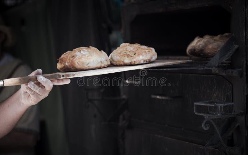 Närbild av en manbagare som introducerar bröd i en klassisk ugn royaltyfria bilder
