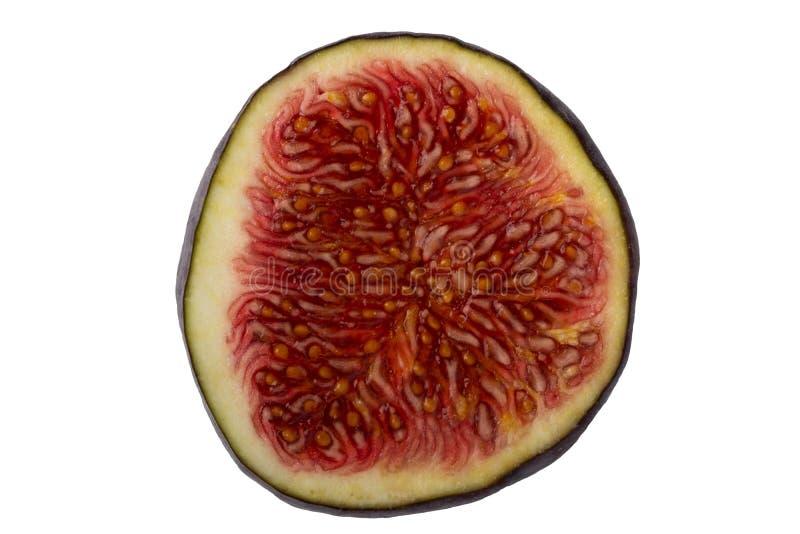 Närbild av en ny skivad mogen purpurfärgad fikonträdfrukt som isoleras på en w arkivfoton