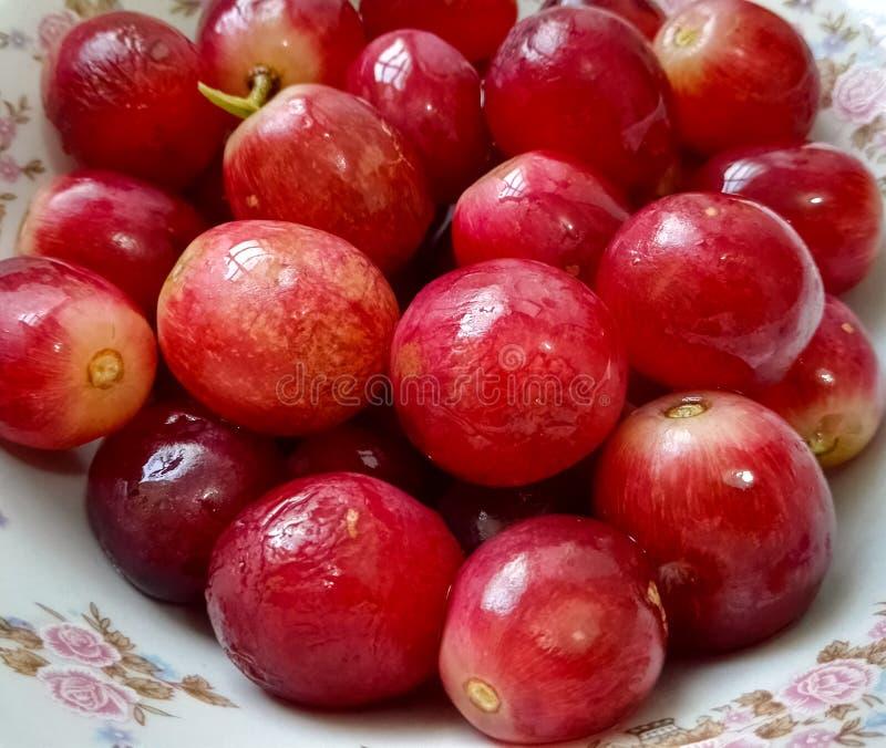 Närbild av en platta av läckra stora och ljusa röda druvor royaltyfria foton