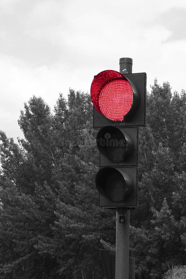 Närbild av en röd trafikljus royaltyfri fotografi