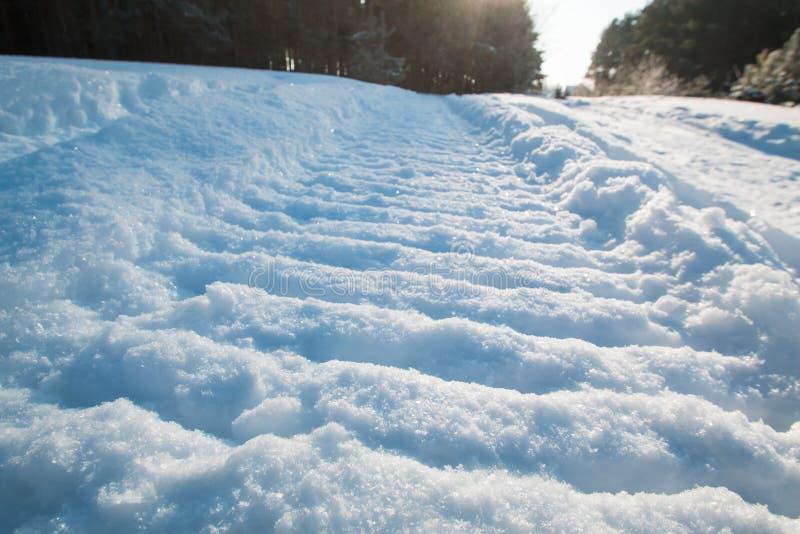 Närbild av ett snövesslaspår på snö och solen royaltyfria foton