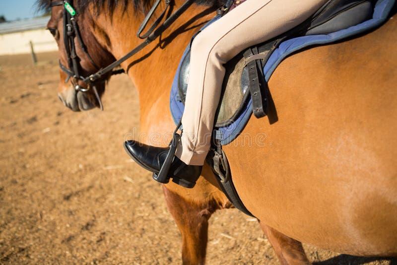Närbild av flickasammanträde på hästbaksidan royaltyfri foto
