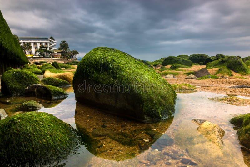 Närbild av gröna Moss Covered Rocks på stranden med mörk dramatisk himmel under en storm arkivfoton