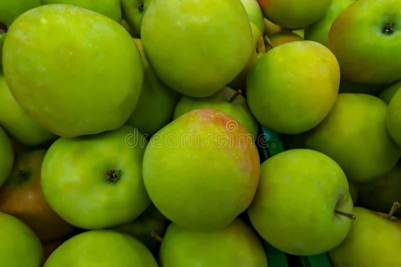 Närbild av högen av äpplen royaltyfri fotografi