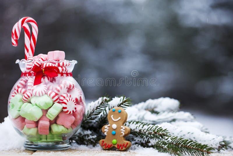 Närbild av kruset med den mintkaramellgodisar och pepparkakan på snö royaltyfri bild
