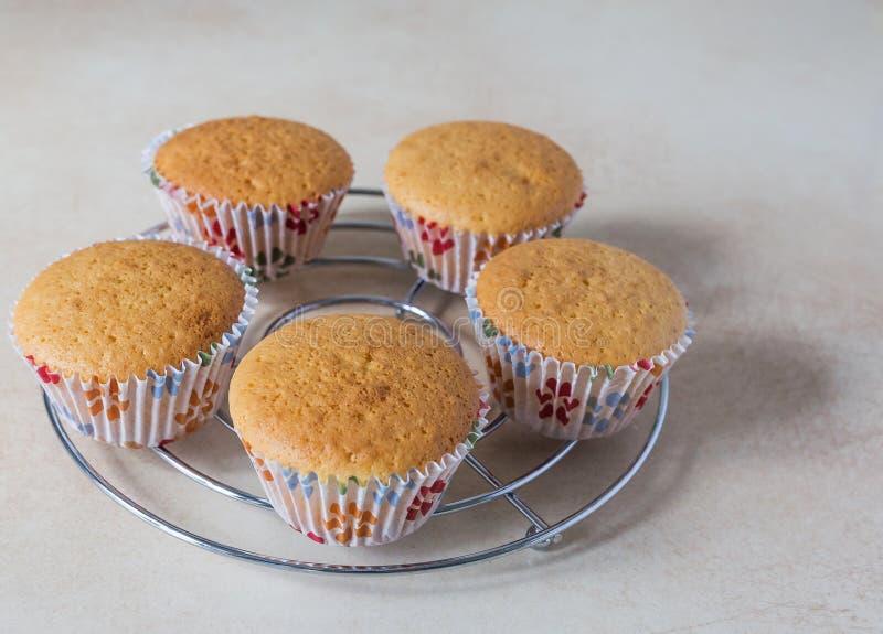 Närbild av läckra bakade muffin royaltyfri bild