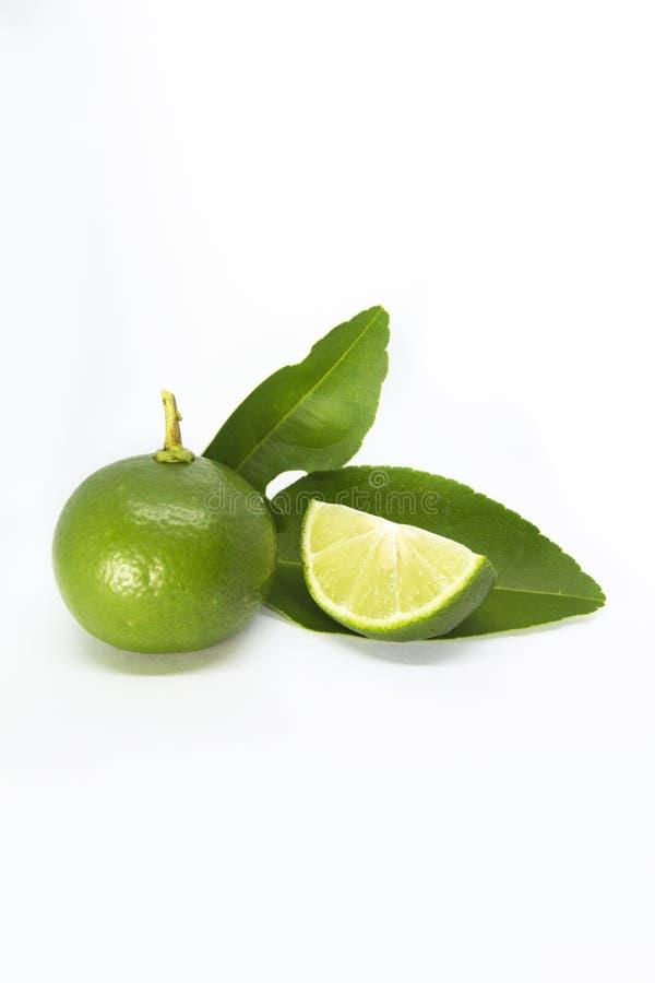 Närbild av limefrukter på vit bakgrund arkivbild