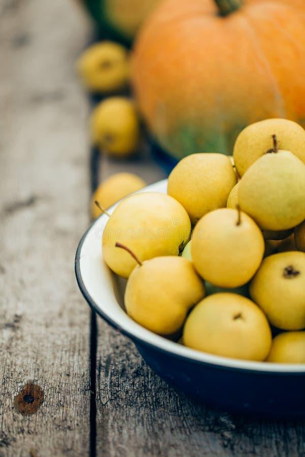 Närbild av mogna gula päron i en bunke på bakgrunden av höstpumpor royaltyfria foton