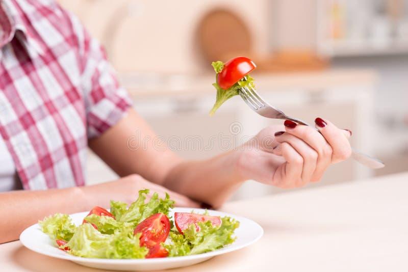 Närbild av ny sallad med tomaten royaltyfri bild