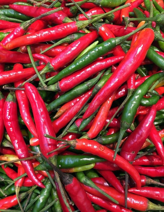 Närbild av röda och gröna chili eller chilipeppar för bakgrund arkivfoto