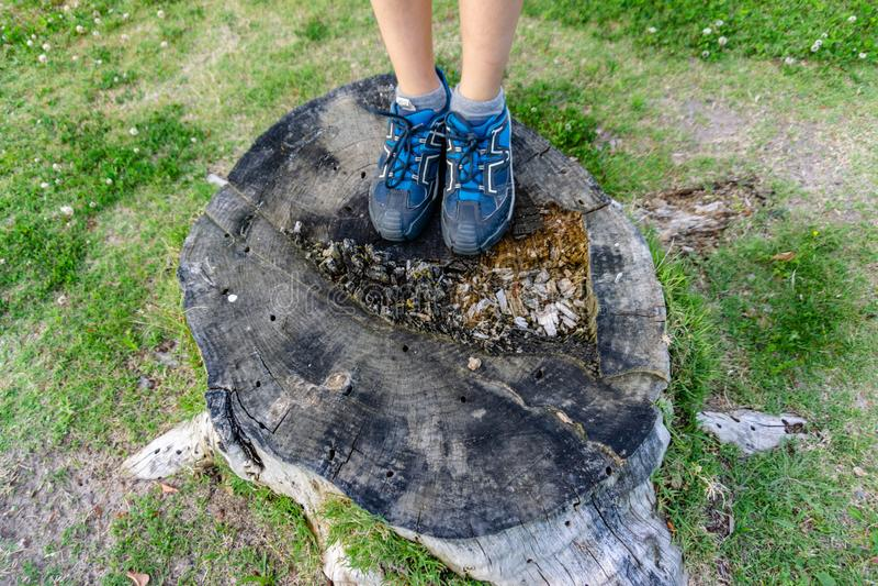 Närbild av tonåringfotgängarefot som går på skog arkivbilder