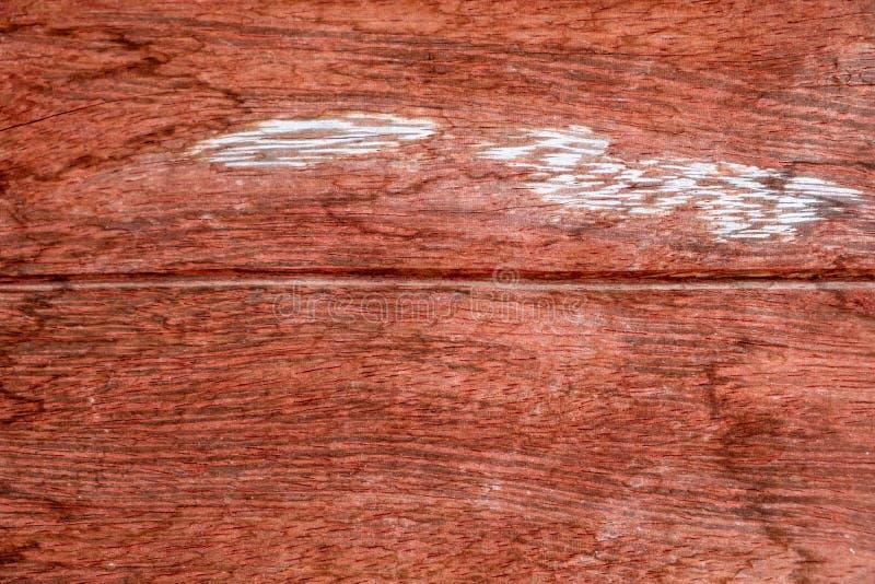 Närbild av trädstubben med bakgrund för grov textur och för årlig cirkel fotografering för bildbyråer