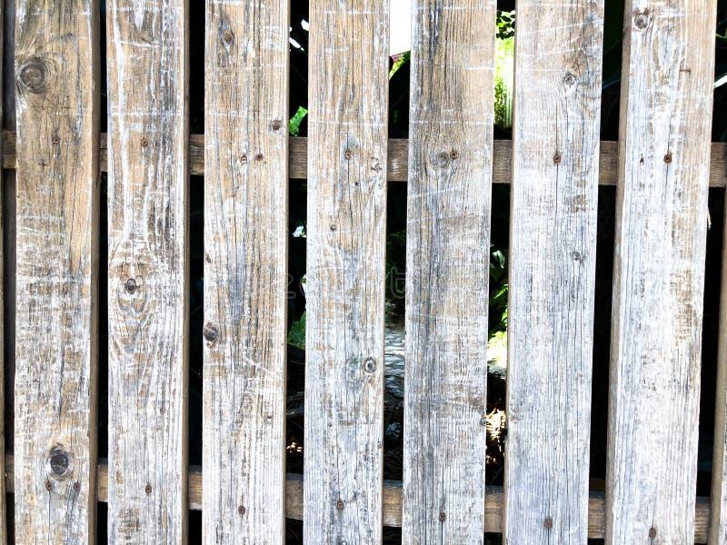 Närbild av trästaketbakgrund för vertikal enkel ek Gammal knuten timmervägg Lantlig modell för tappning royaltyfri bild