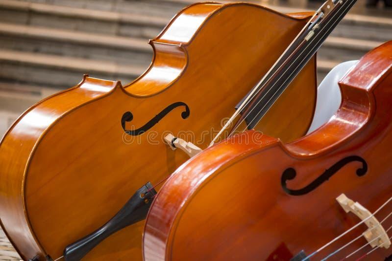 Närbild av violoncell två violoncello royaltyfri foto