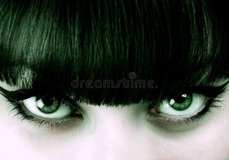 Närbild en härlig grönögd flicka royaltyfria bilder