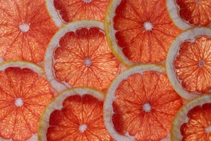 Närbild för bakgrund för grapefruktskivor abstrakt, i att bo korallfärg av året 2019 Bild f?r tapet Inskriften av r?tt f?rgar lok royaltyfria bilder