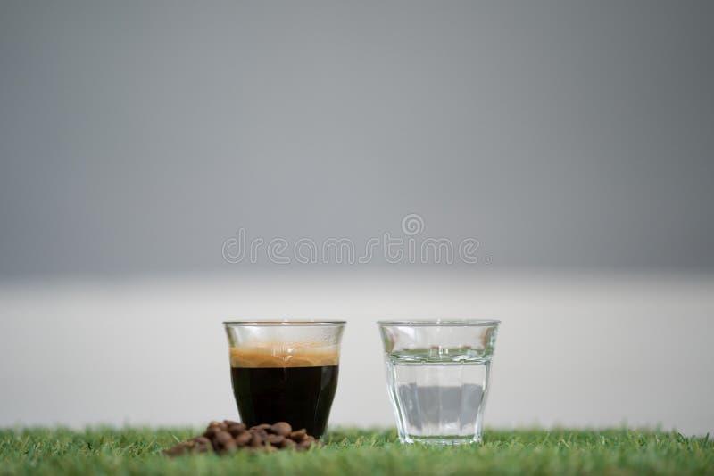 Närbild hur man gör americanokaffe, ingrediensespresson royaltyfri fotografi