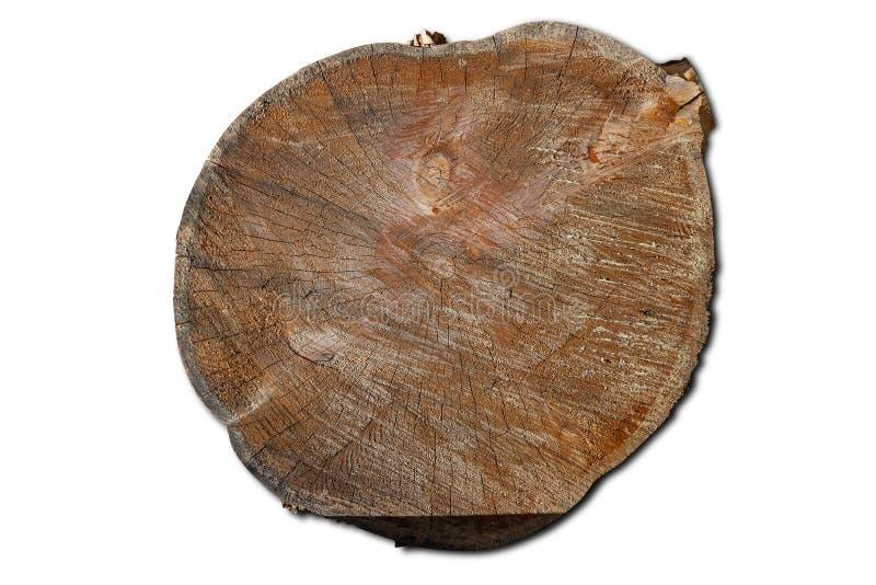 Närbild på en journal av ett träd i form av en rund timmer med cirklar Journalkonstruktionsmaterial för isolerad konstruktion på  arkivfoto