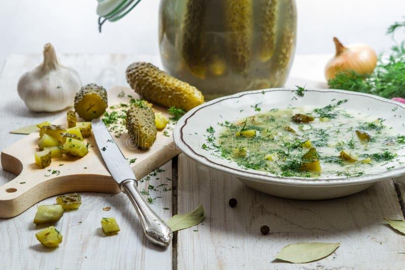 Närbild på soup, inlagda gurkor och nya grönsaker arkivfoto