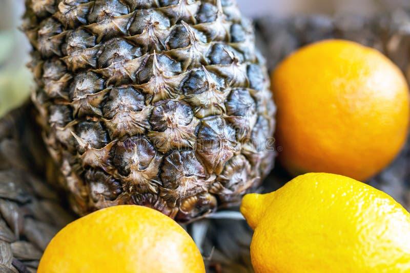 Närbildananas och citrusa tropiska frukter på den mörka maträttbunken Välkommen gåva för hotellrum royaltyfria foton