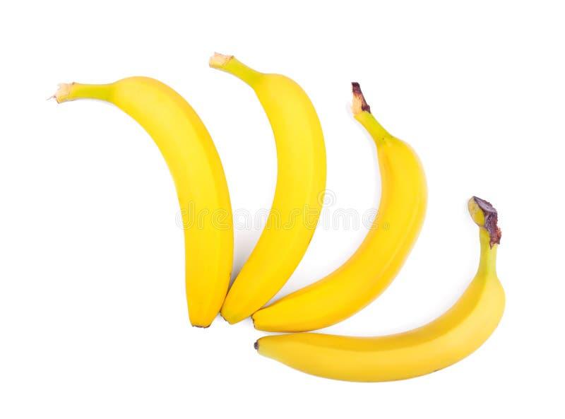 Närbildbananer som isoleras över den vita bakgrunden Aptitretande tropiska frukter Fyra ljusa gula bananer Vegetarisk livsstil arkivfoton