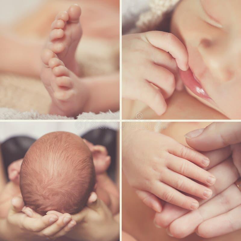 Närbildcollage, ett nyfött behandla som ett barn, kroppsdelar fotografering för bildbyråer