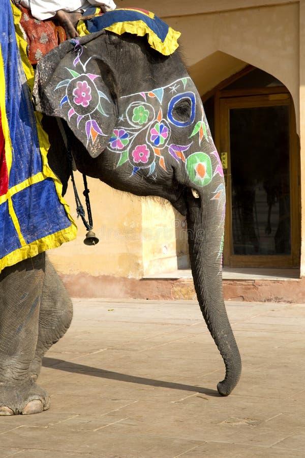 Närbilden av elefanten målade vividly i Amber Fort, Jaipur, Indien royaltyfria foton